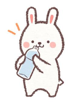 Watering rabbit
