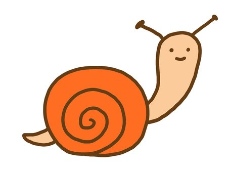Snail rainy season rain
