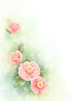 Camellia watercolor illustration illustration