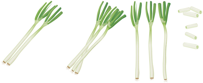 Green onions / Vegetables