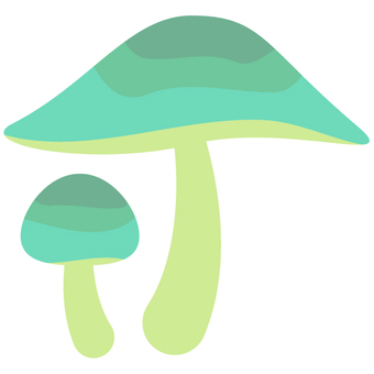 버섯 (미도리)