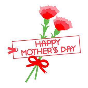 Carnation Arrangement 10 Mother · English