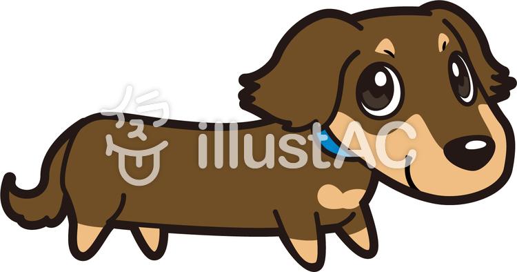 犬ミニチュアダックスフンドイラスト No 237428無料イラストなら