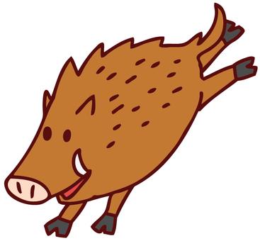 Illustration of wild boar