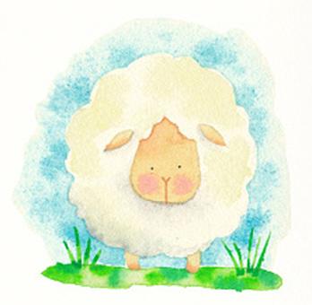 綿羊(001)