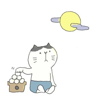 Moon-viewing cat