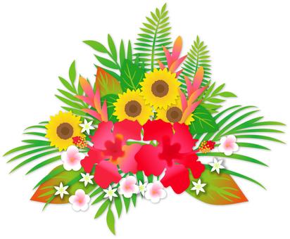 热带花卉花束