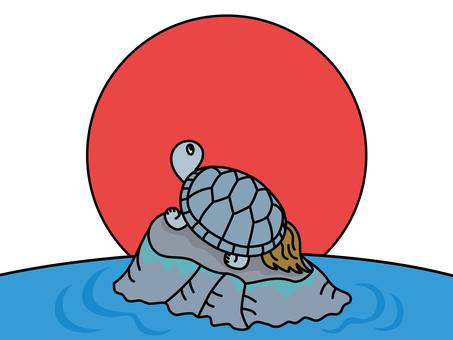 日出的烏龜