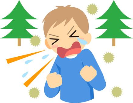 Spring / hay fever
