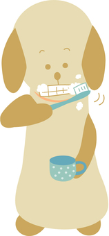 Dogs tooth brushing