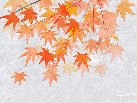 Autumn leaves and paper