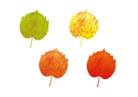 단풍의 가을