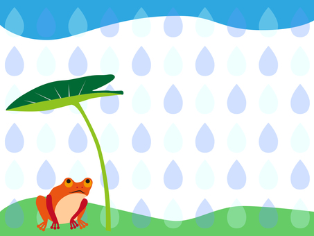 Frog rain in the rain