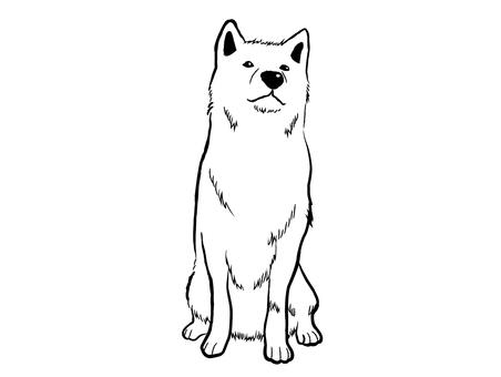Japanese dog 03