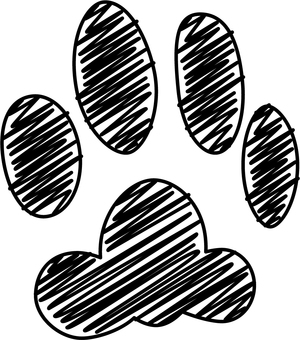 Footprints of cats