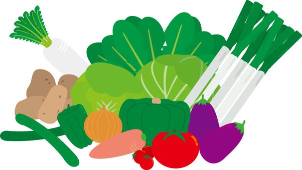 Food Series Vegetables Major Vegetables