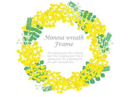Mimosa lease frame