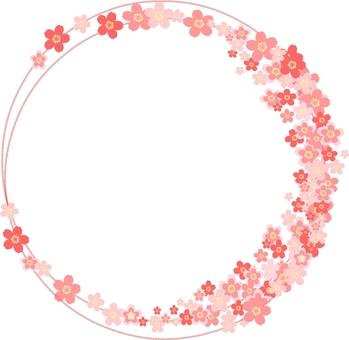 Sakura Circle