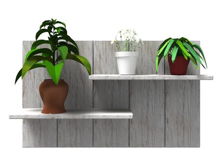식물이있는 고목 선반 (화이트)