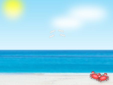 여름 모양 ②