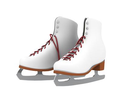 스케이트 신발