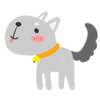 Dog gray tongue out