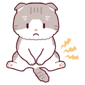 Squat sitting