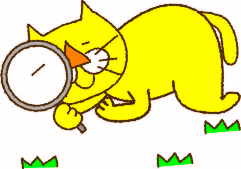 Yellow cat and free research