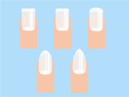 Nail shape and type