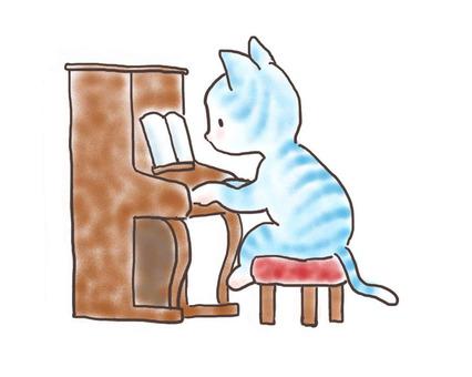 Piano cat 12