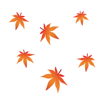 Images of autumn leaves