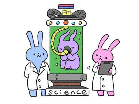 Scientist rabbit doing suspicious experiment