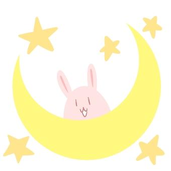 Moon's ship and rabbit