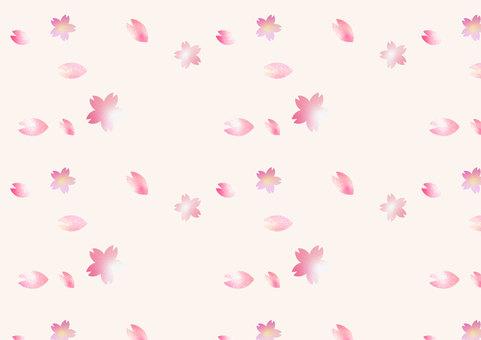 Beautiful cherry blossom pattern