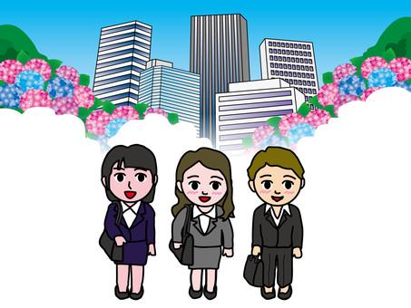 Hydrangea (50) Going office Women's office town