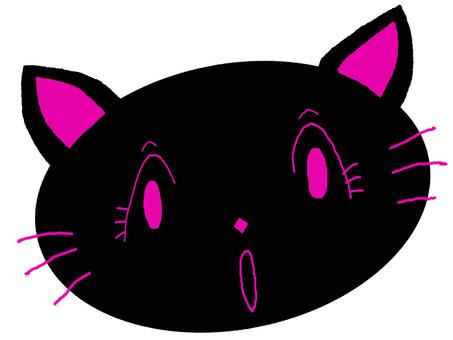 Black cat face surprised