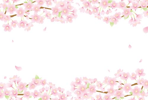 벚꽃 배경 06