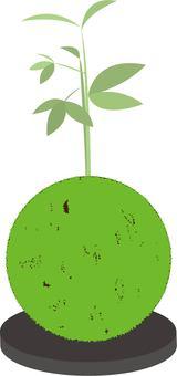 Moss jade
