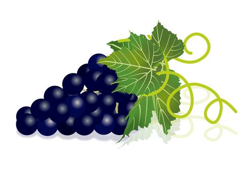 Delicious grape 10