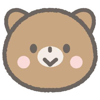 Cute animal bear