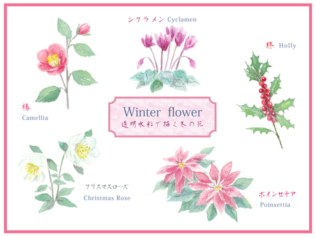 Winter flower set painted with transparent watercolor