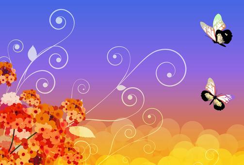 란타나와 호랑 나비 4