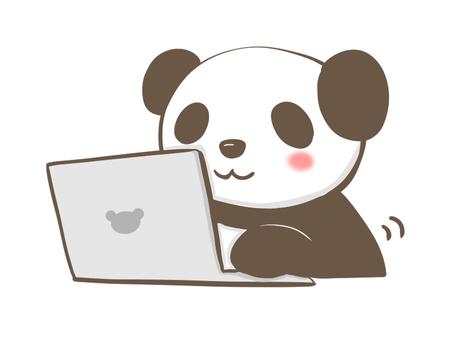 Panda using a personal computer