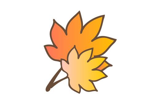 Fall Material 07