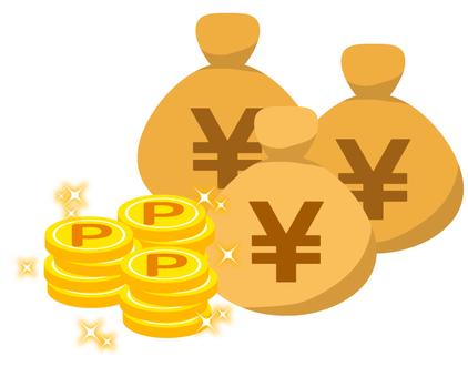 Point coin · shine · accumulate · bag