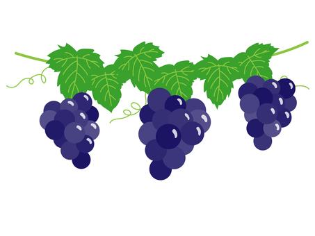 Grape shelf / black