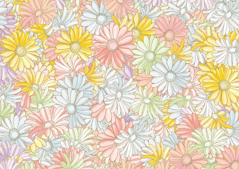 Background of Gerbera