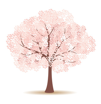 Cherry Tree (Illustrator Pass)