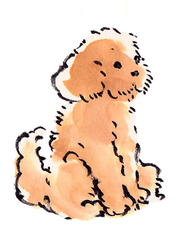 "Toy poodle ""Handwritten material"""