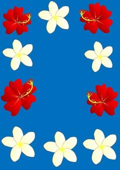 Hibiscus and Plumeria (Blue))